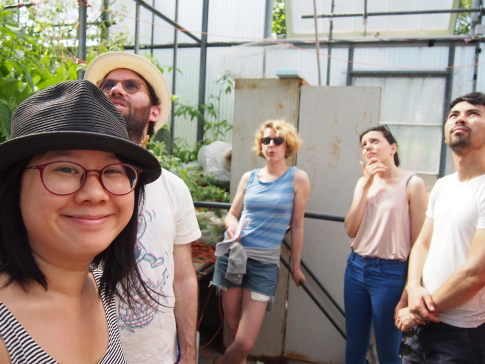 apres une visite de la ferme un pause creme solaire indispensable et des plants de tomate fort appetissants tout le monde se met au boulot